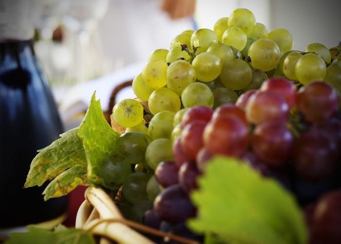 Harkány szüreti fesztivál - szőlő