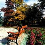 Pad a Zsigmondy sétánynál az ősz színeivel