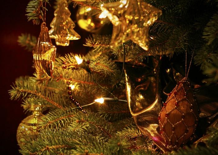Téli hangulat - karácsonyfa