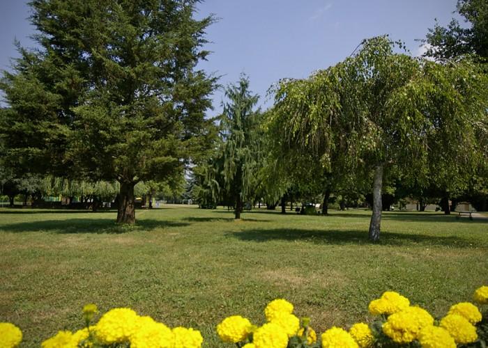 Harkányi Gyógy- és Strandfürdő, parkosított területek