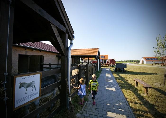 Ős-Dráva Látogatóközpont, háztáji gazdaság bemutatója
