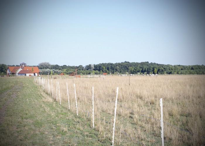 Ős-Dráva Látogatóközpont, látkép