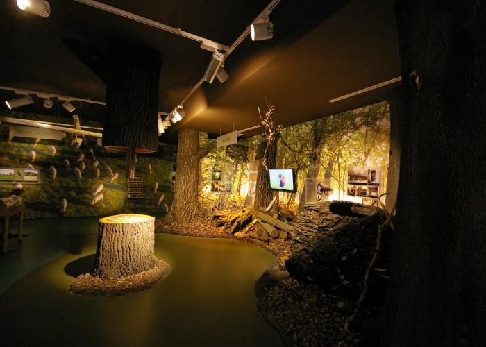 Ős-Dráva Látogatóközpont, interaktív látogatóterem